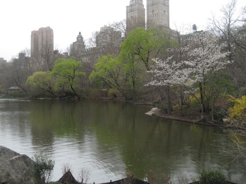 New york 4-09 015